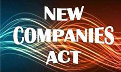 Company Act 2013